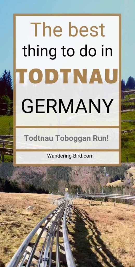 Hasenhorn Rodelbahn, Todtnau Toboggan Coaster, The Best thing to do in Todtnau, Schwarzwald Germany