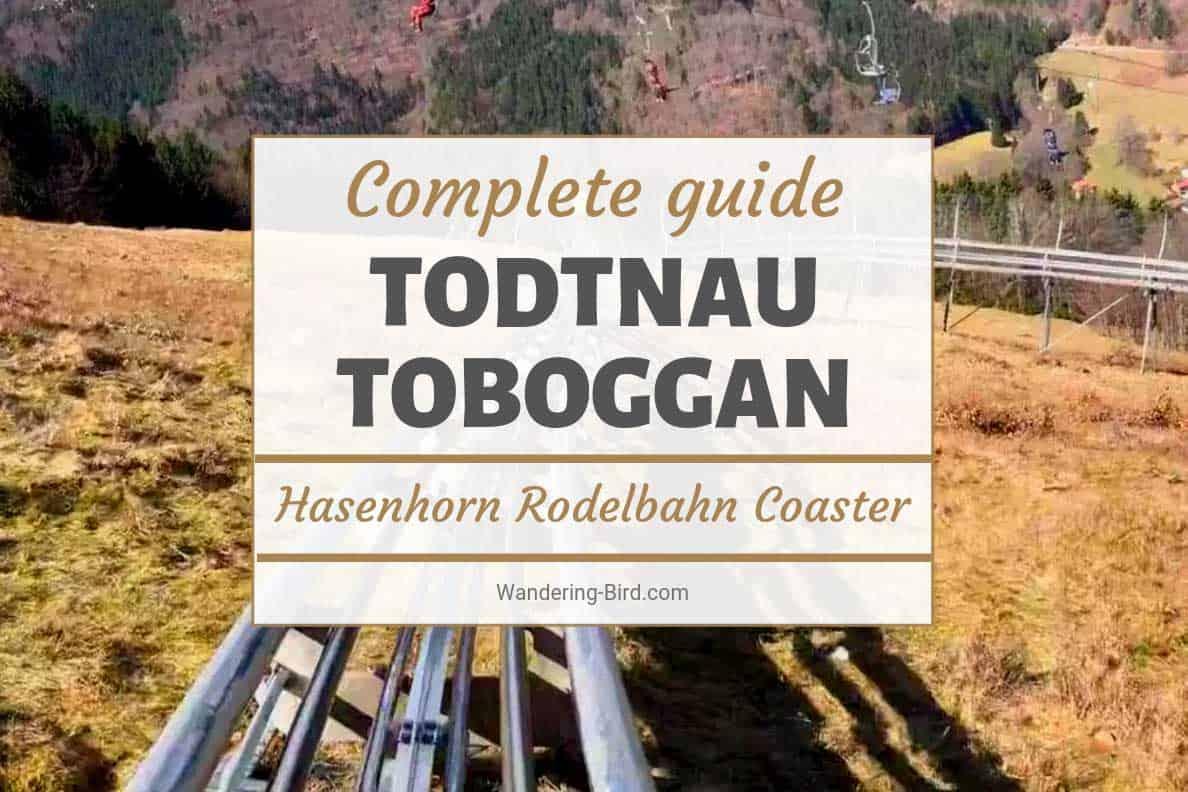 Hasenhorn Rodelbahn Todtnau Toboggan Coaster Germany