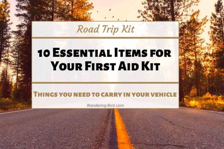 Car First Aid Kit- things to pack in your car first aid kit for France and Europe