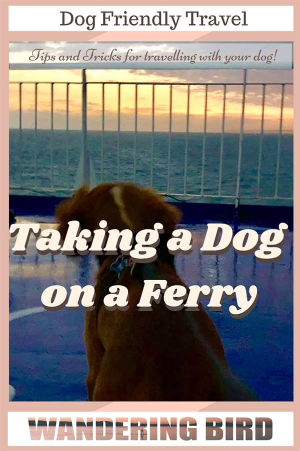 When we travelled from the UK to France by ferry, I hated the idea of leaving our little puppy in the car on his own. BUT- did you know you can take your dog from the UK to France by ferry and keep him in the cabin with you in a Pet-Friendly cabin? This guide is full of tips and tricks of what to expect when you travel on a ferry with your dog. #dogfriendlytravel #dog #travel #ferry #UK #france #travelwithdog