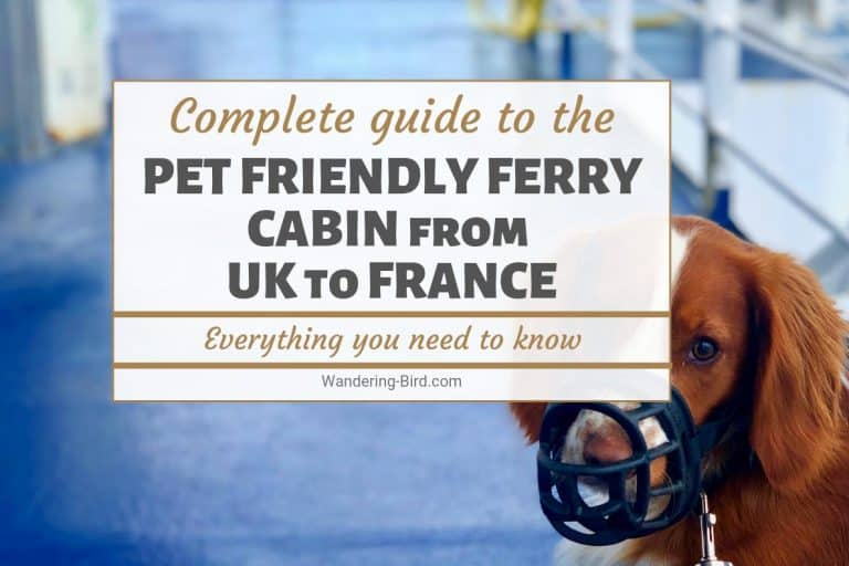Taking a dog to France from UK? Try a pet-friendly cabin on a ferry.