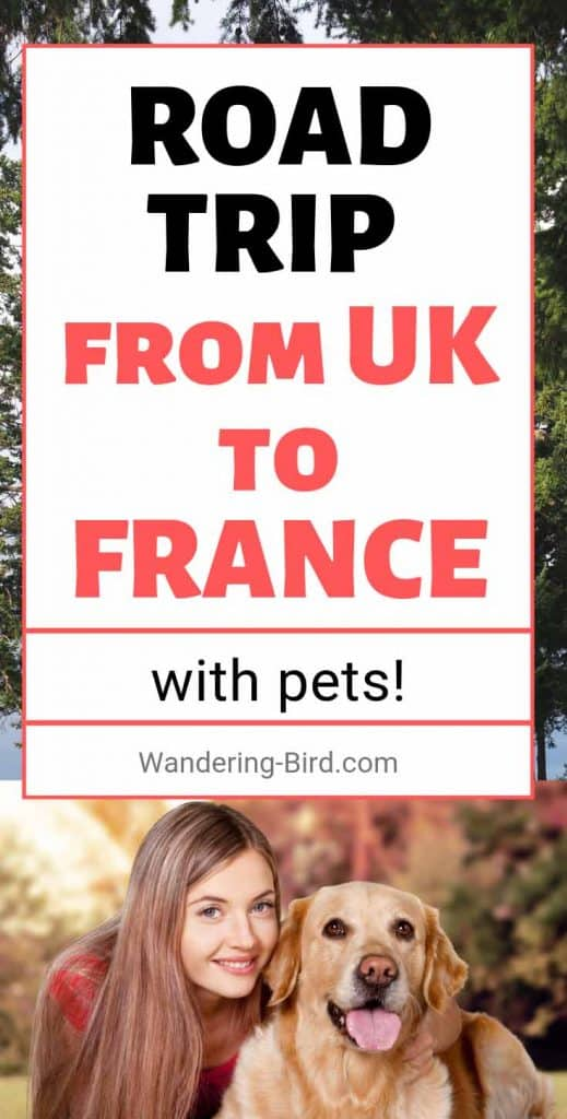 Enjoy travelling with your pet? Want to take your dog to UK or France? Here's how to get between the two without upsetting your pet or leaving them in the car. #pettravel #roadtriptips #UK