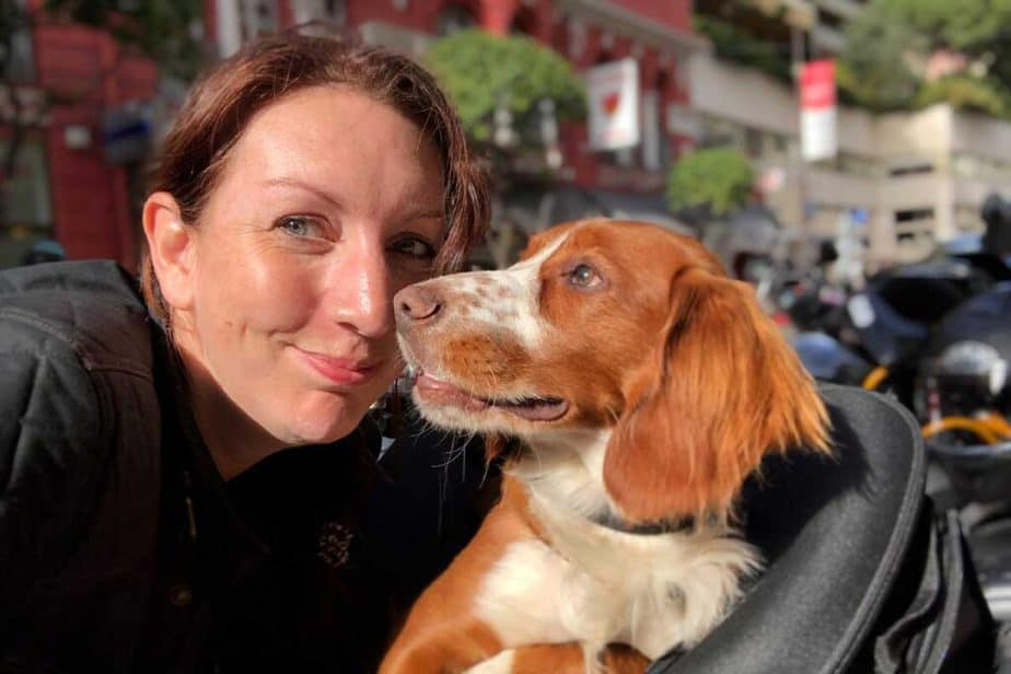Wandering Bird Motorhome Travel Blog & dog