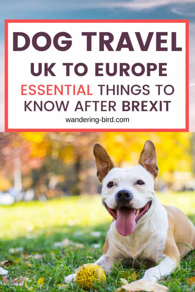 Dog travel UK to France after BREXIT (2021)- everything you need to know about the new changes in taking your pet from UK to Europe, including new health certificate and the end of the pet passport!